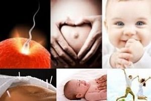 Acupuncture for Fertility and IVF Support